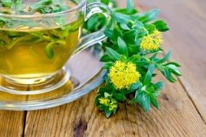 Cette rhodiola, posé à côté d'une tasse de thé, est-elle vraiment un danger ?